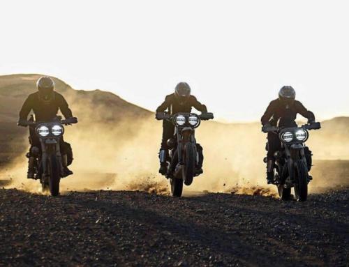 Desert Wolves by El Solitario, una Harley-Davidson per il deserto